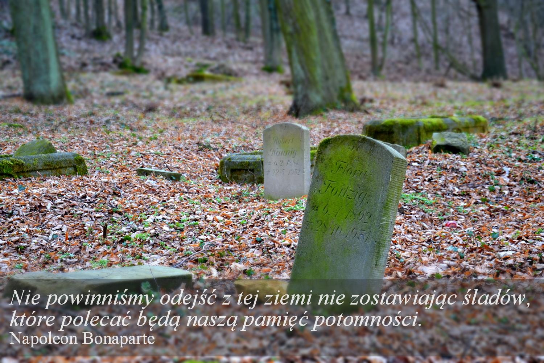 Stary cmentarz w Płakowicach, geocaching