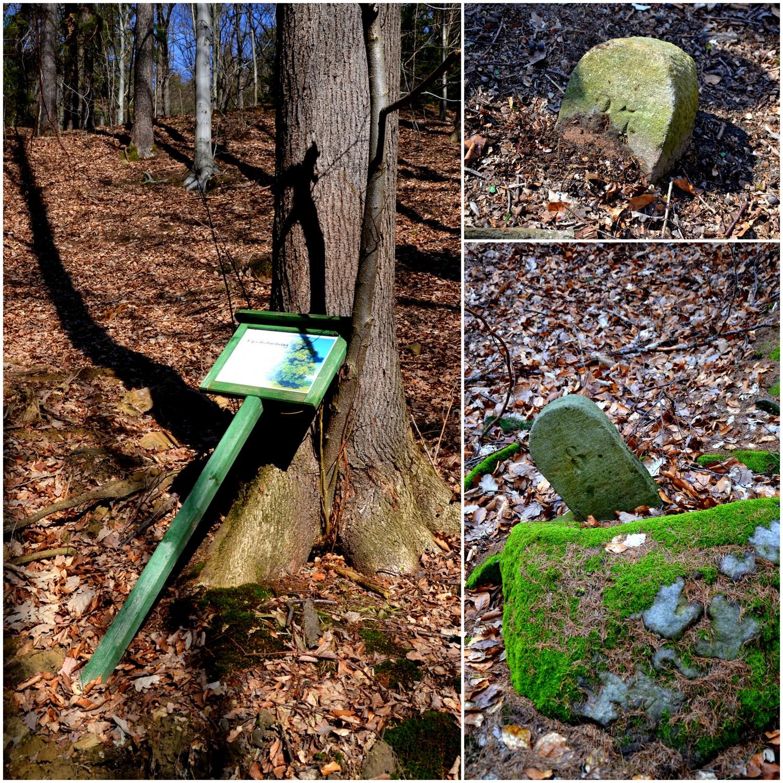 Wleń, Ścieżka edukacyjna Góra Gniazdo, geocaching, geocache