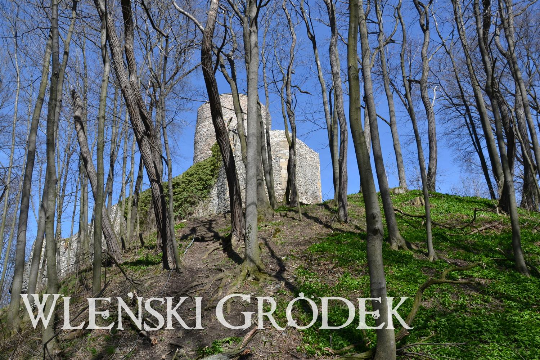 Łupki koło Wlenia. Zamek książęcy Lenno, geocaching