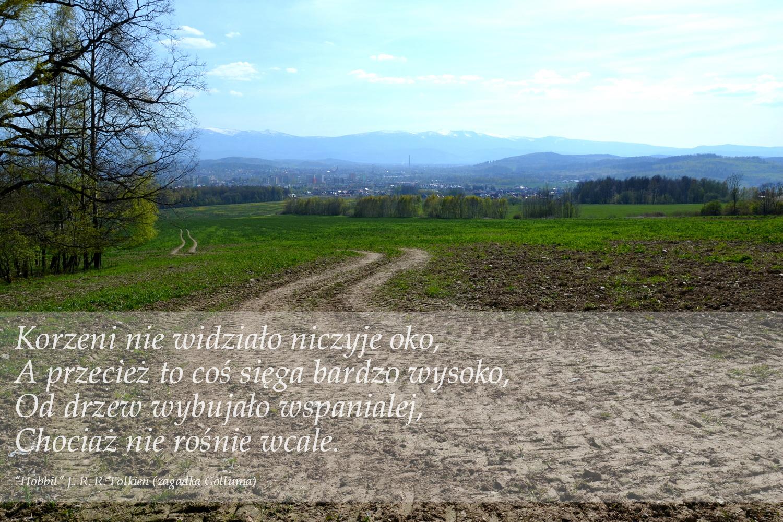 Góra Szybowcowa koło Jeleniej Góry