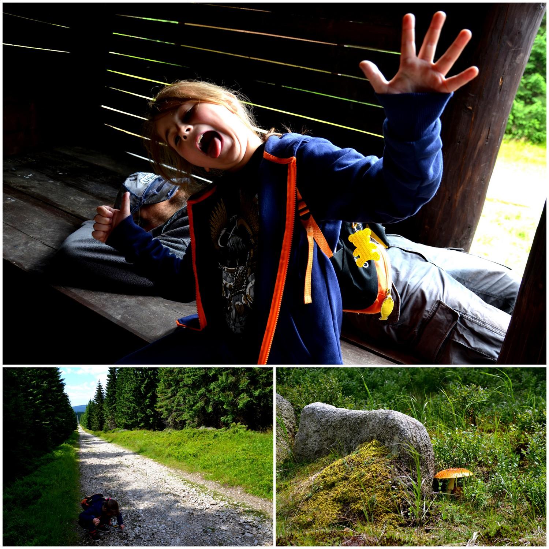 Szklarska Poręba - Jakuszyce, na szlaku, geocaching